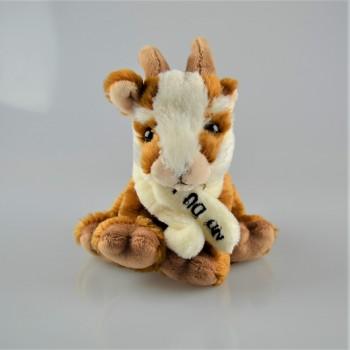 Chèvre du Laus